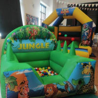 Ball Pit And Castle Package
