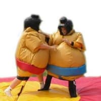 Package 2 - Any Childs Castle With Sumo Suit