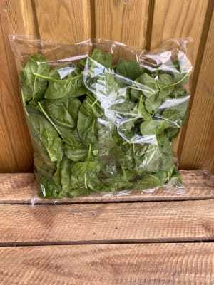 Large Bag Of Spinach