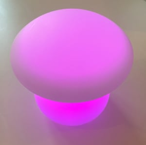 Magic Mushroom Mood Light