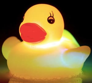 Light Up Duck