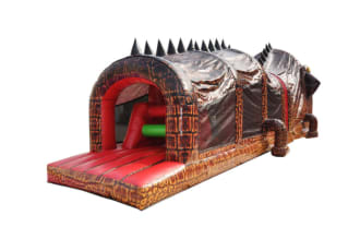 3d Crocodile Obstacle Course