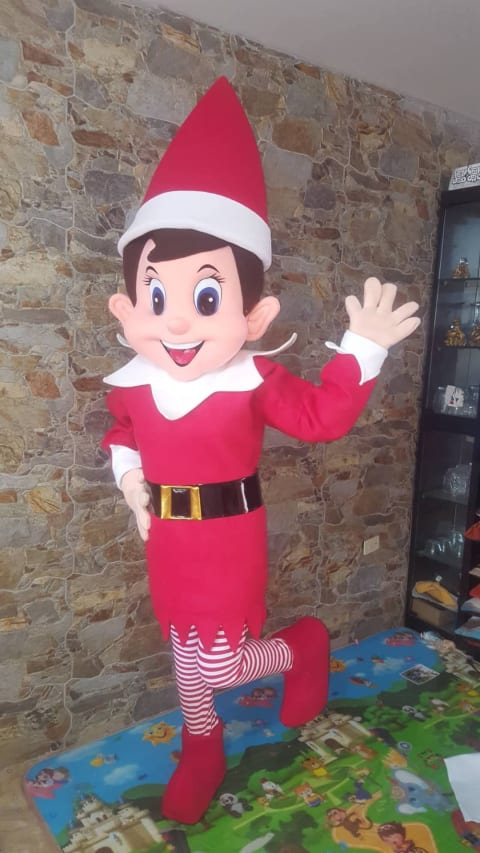 Elf Visited In Stanley 23nd Dec 2020.