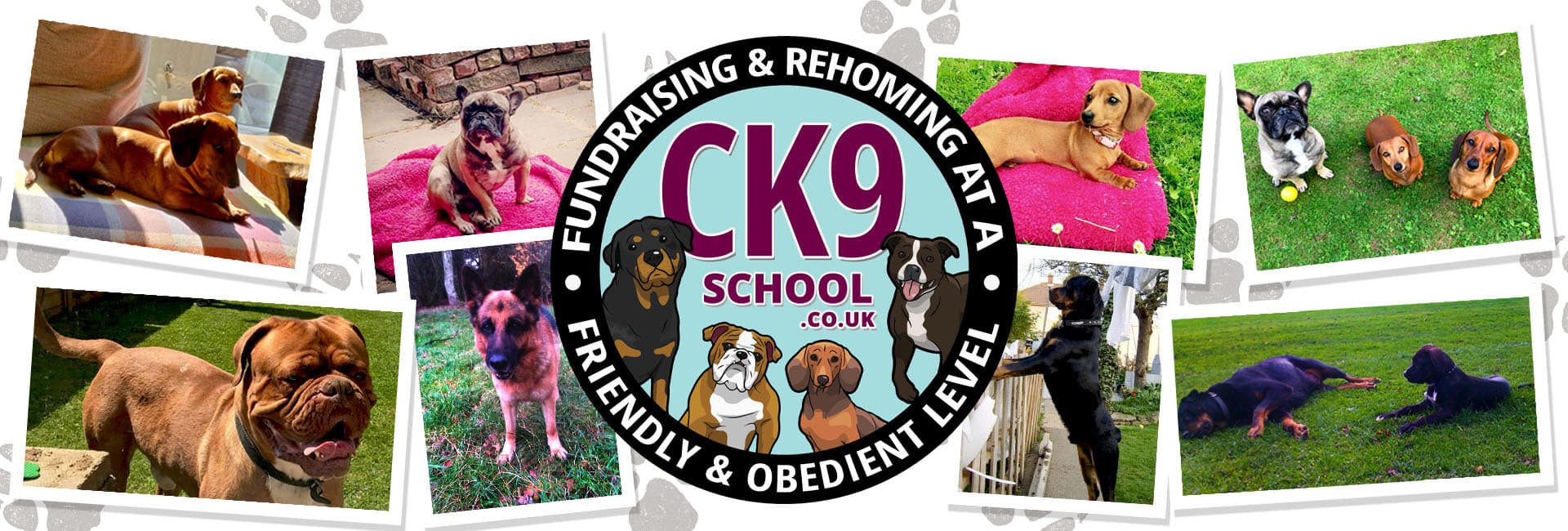 Ck9 Rehoming Centre