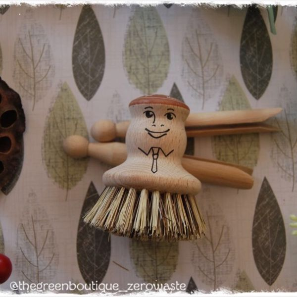 Mr. Pot Brush