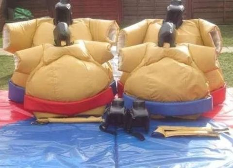 Adult Kids Sumo Suits