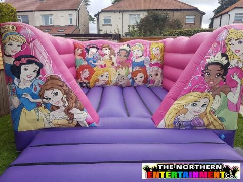 Princess Bouncy Castle Hire County Durham