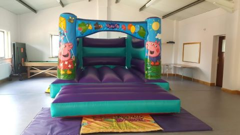 Aqua Piggy H Style Bouncy Castle