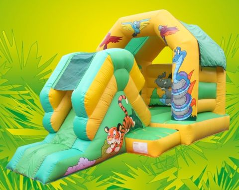 Jungle Slide And Bounce