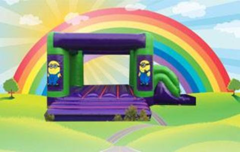 Purple Castle & Slide