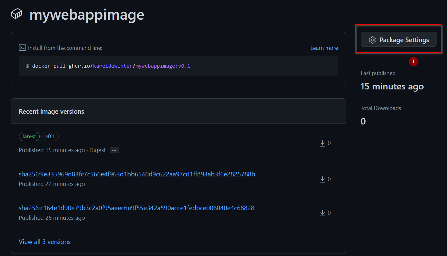 GitHub Packages - Package Settings