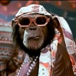 Aaron Grant - Grease Monkey