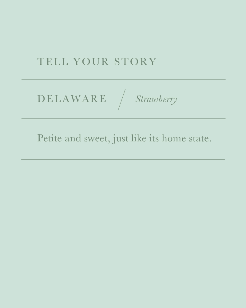 Delaware Strawberry Charm