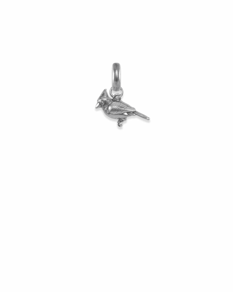 Illinois Cardinal Charm in Vintage Silver