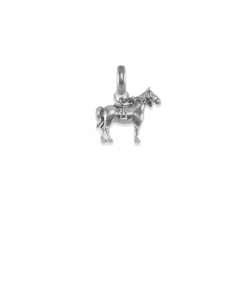 Kentucky Race Horse Charm