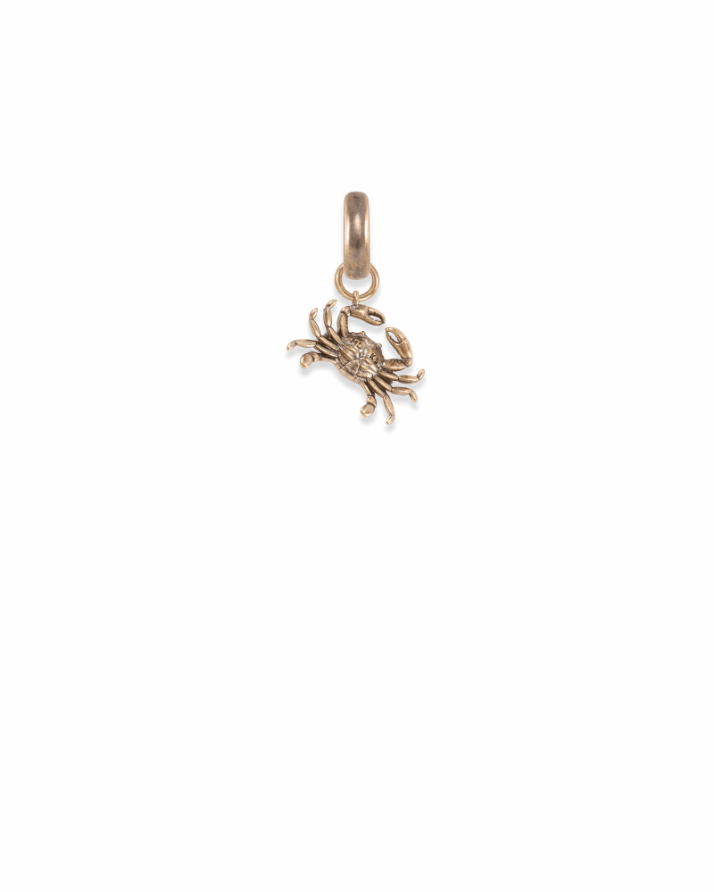 Maryland Blue Crab Charm