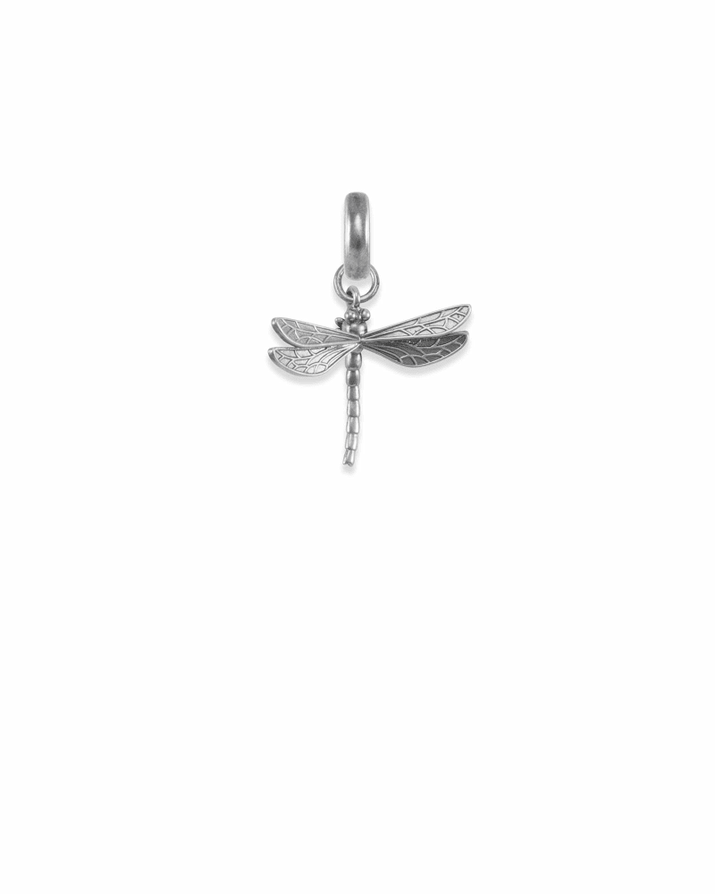 Michigan Dragonfly Charm in Vintage Silver