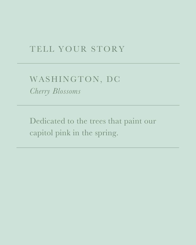 Washington, DC Cherry Blossom Charm
