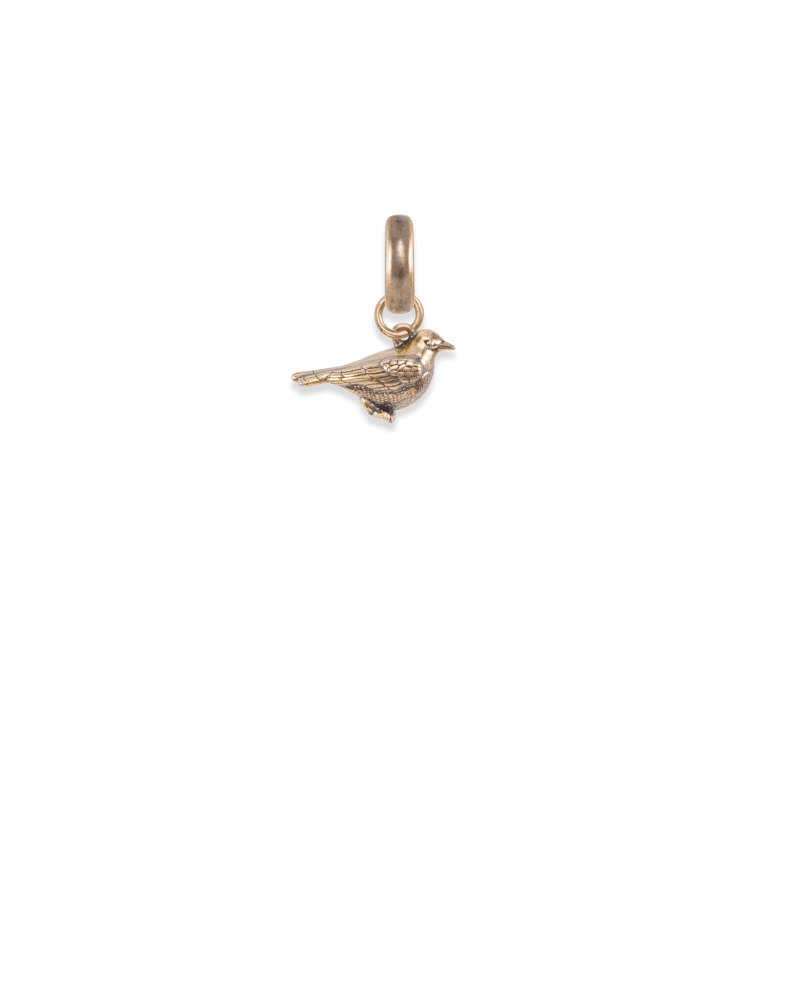 Wisconsin Robin Charm in Vintage Gold