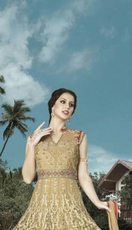 Light Cream & Golden Nett Salwar Kameez