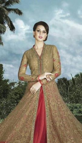Golden & Red Nett Salwar Kameez