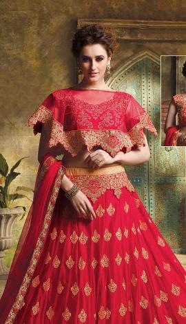 Red Net And Art Silk Lehenga