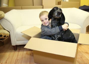 Gyerek kutya család külföldre költözés