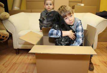 Nemzetközi költöztetés, ahogy Mi csináljuk! 237