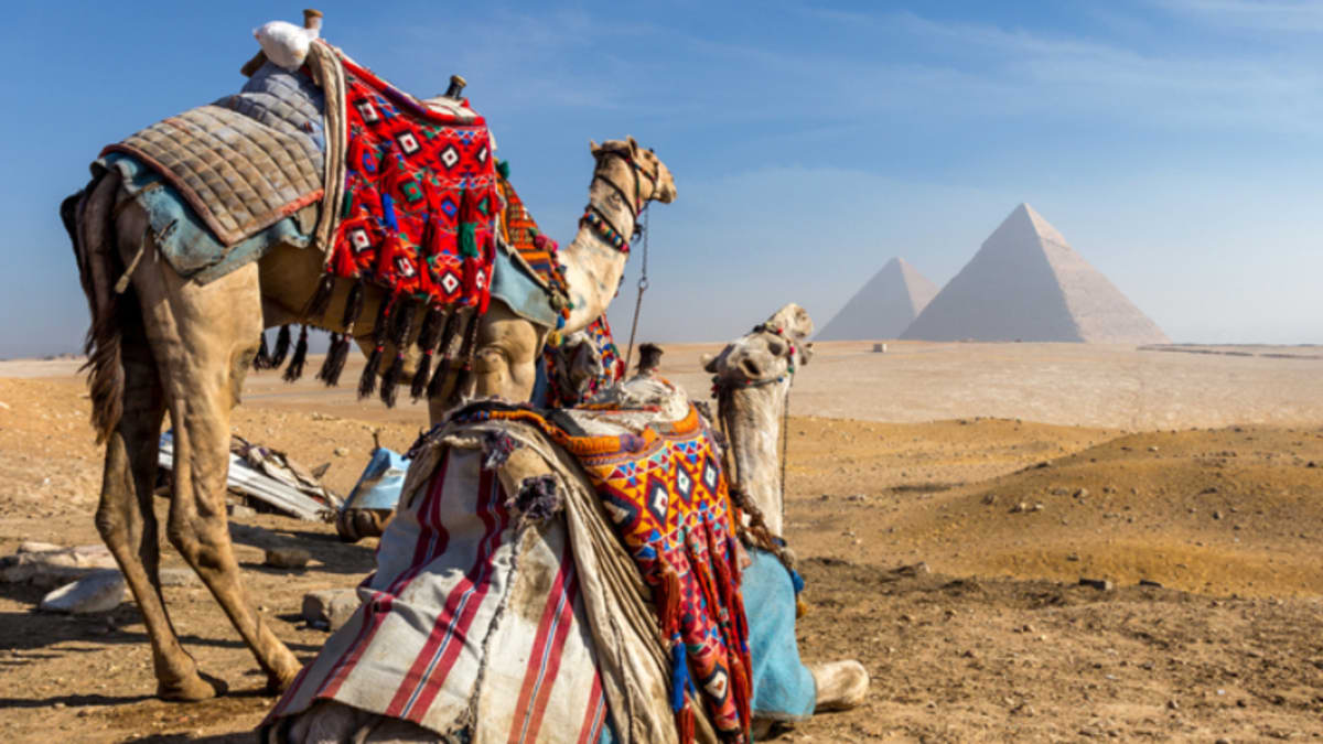 Cairo Tour Packages & Holidays With Tripfez
