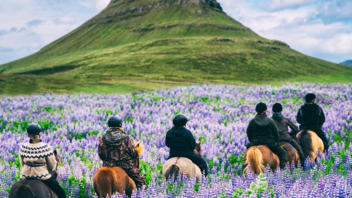 Pakej Percutian ke Iceland Bersama Tripfez