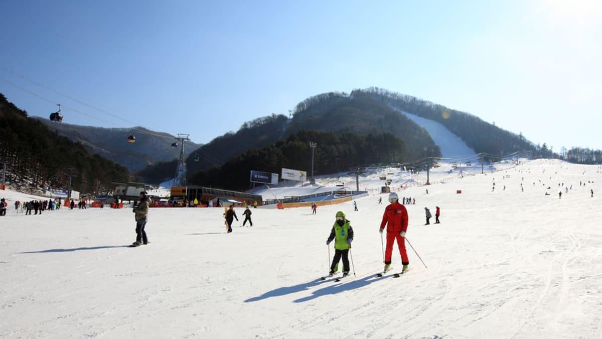 Fantasia Musim Sejuk Seoul Bersama Tripfez