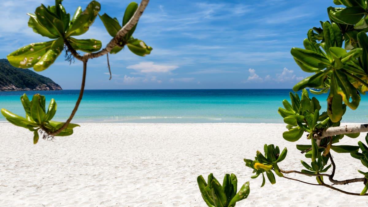 Snorkeling @ Redang Holiday Beach Resort Bersama Tripfez