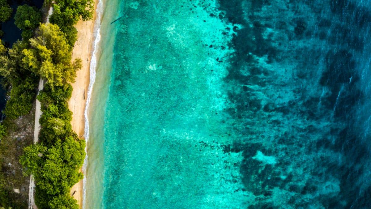 Salang Indah Tioman Island  With Tripfez