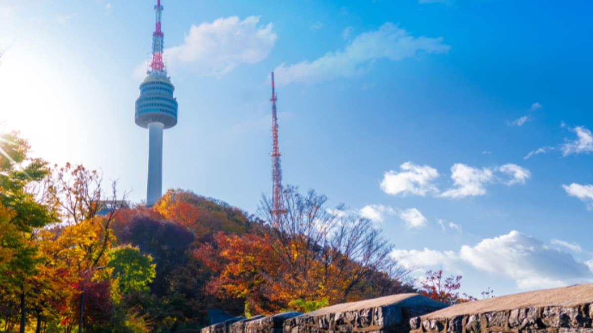 Terbaik di Korea Bersama Tripfez
