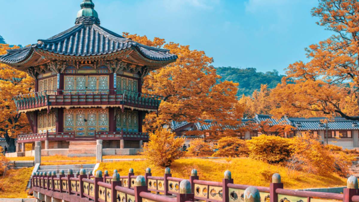 Korea (Musim Luruh) Bersama Tripfez