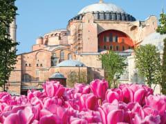Tripfez TravelTurkey 2020 (Spring) package