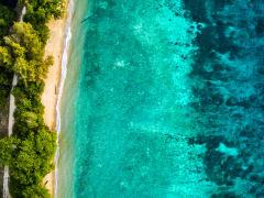 Tripfez Travel Salang Indah Tioman Island  package