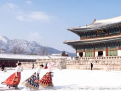 Tripfez Travel Korea (Winter) package