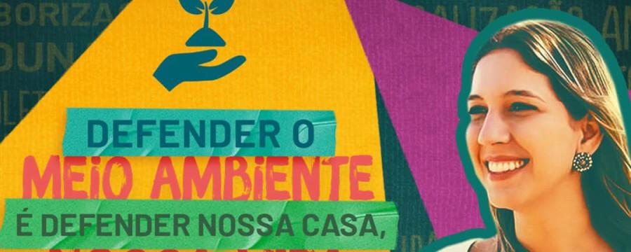 Imagem Principal - DEFENDER O MEIO AMBIENTE É DEFENDER NOSSA CASA, NOSSA VIDA
