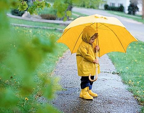 Se acerca la época de Lluvias... Te damos algunas recomendaciones.