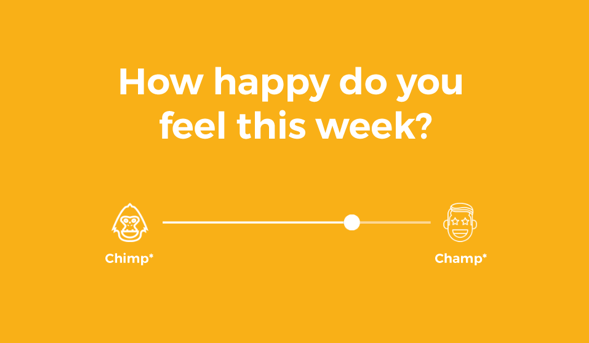 chimp or champ happy days