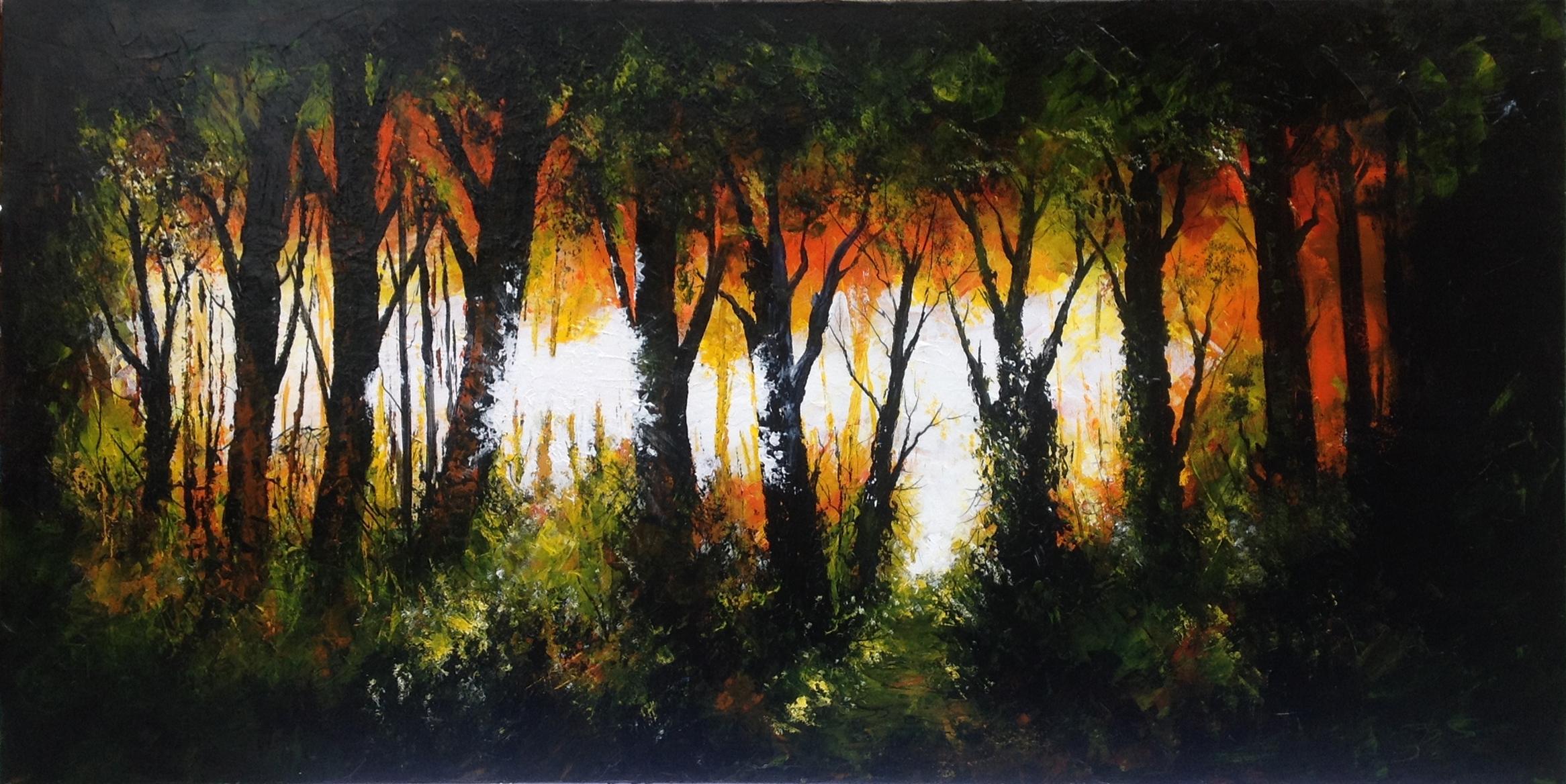 Woodland Shine
