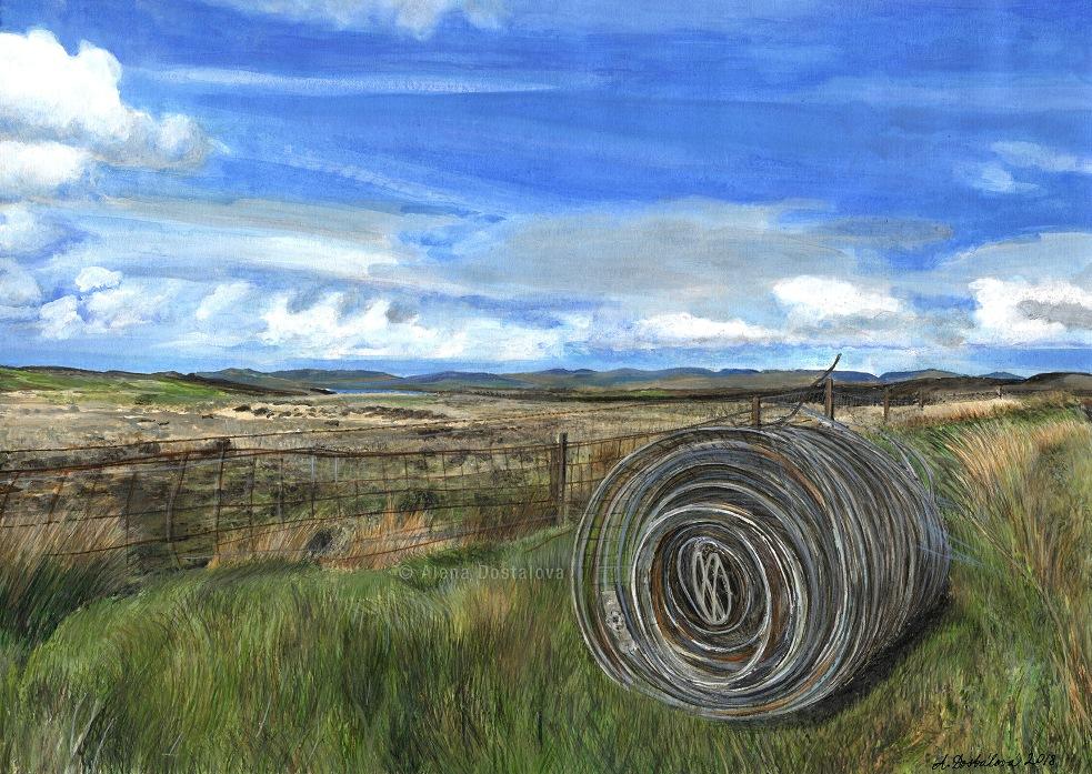Skye Fields