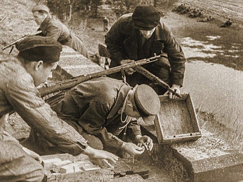 istoriya-zhizni-i-podviga-dvukh-geroev-sovetskogo-soyuza-iz-derevni-avsimovichi-bobruiskogo-raiona-vladimir-parakhnevich-3