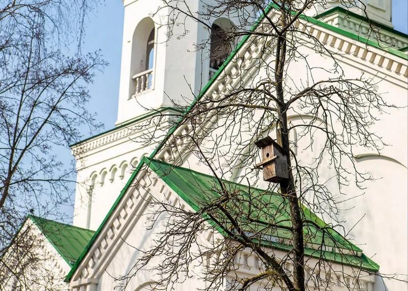 vyasny-akvareli-pavetry-babruiska-i-dykhac-svabodna-tam-31