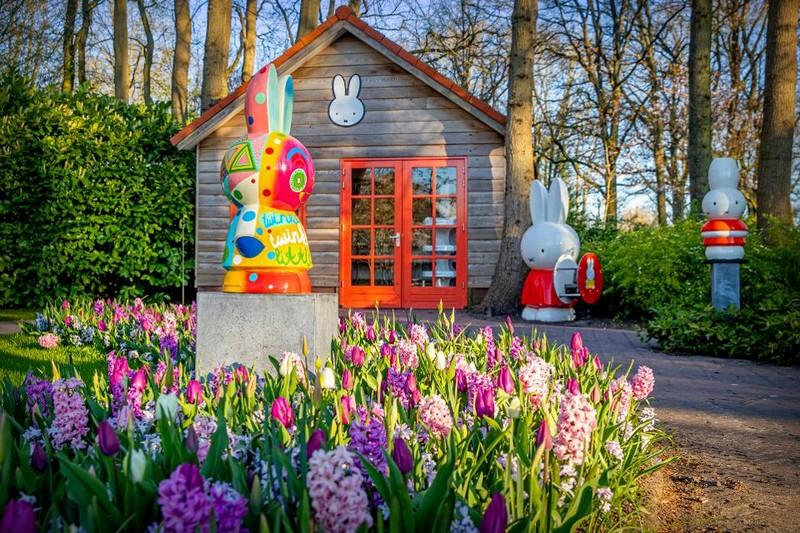 sotrudniki-parka-v-niderlandakh-podgotovili-dlya-lyubitelei-cvetov-virtualnuyu-ekskursiyu-1