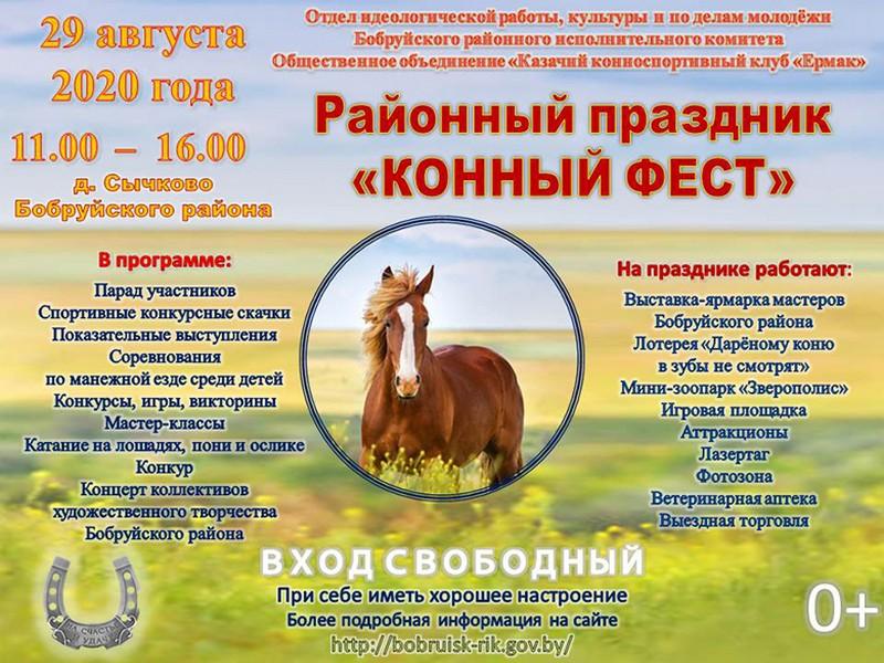 konnyi-fest-proidyot-v-eti-vykhodnye-v-bobruiskom-raione