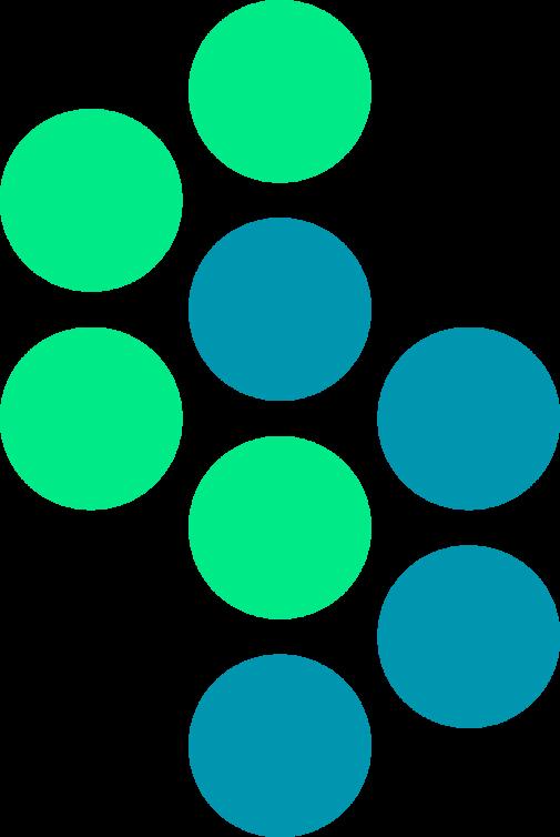 Logo Steerio