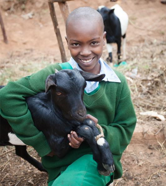 Goats GC Spring 2020
