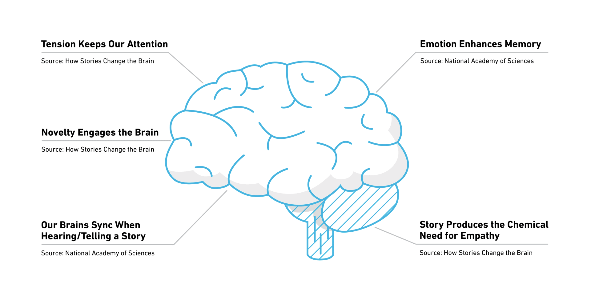 How Storytelling Impacts the Brain